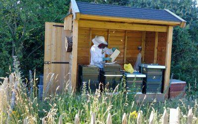 De bijenhoek in bedrijf