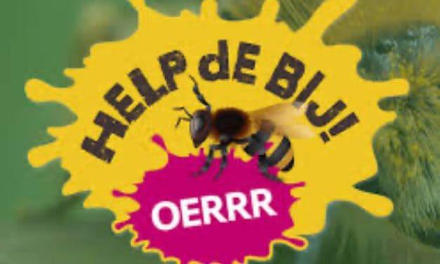 De Bijenhoek, een juweeltje