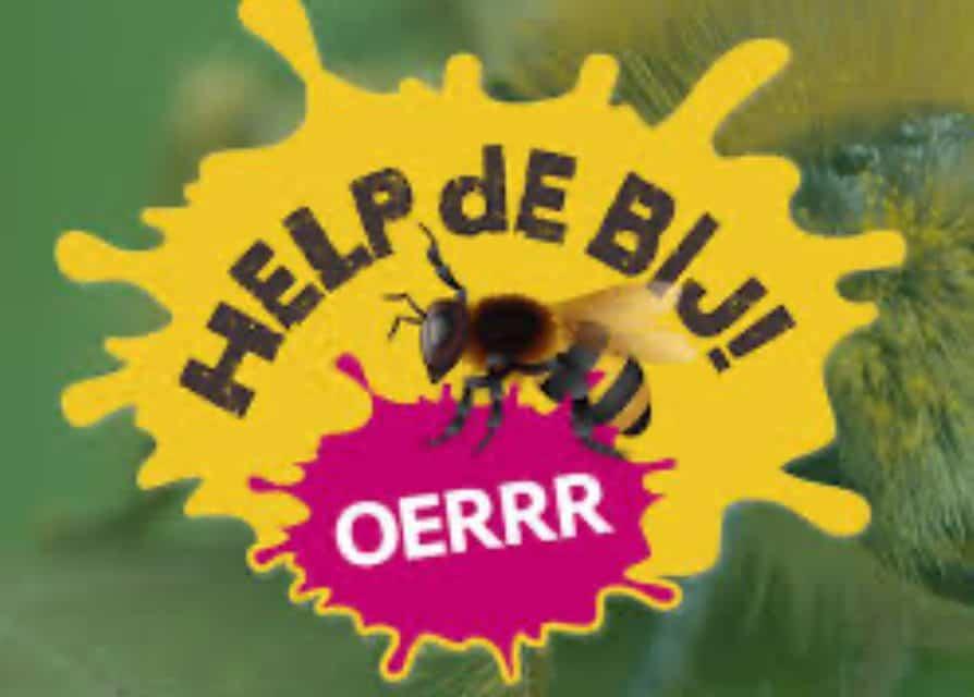 De Bijenhoek, een juweeltje in de Helmerhoek