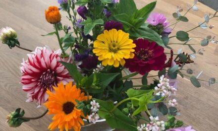 Bloemen uit de Bijenhoek