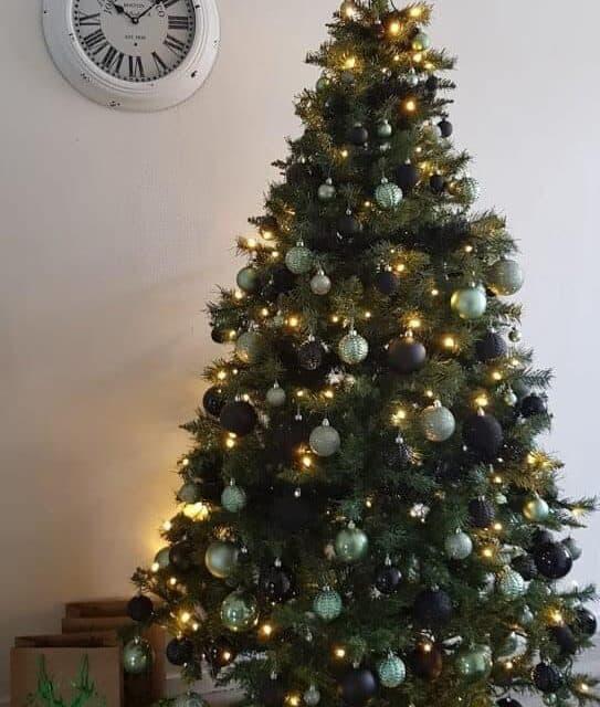 Vroege kerst