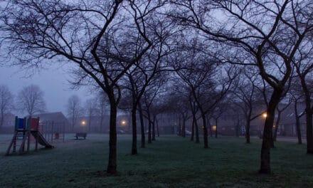 Januari 2021, Helmerhoek in de mist