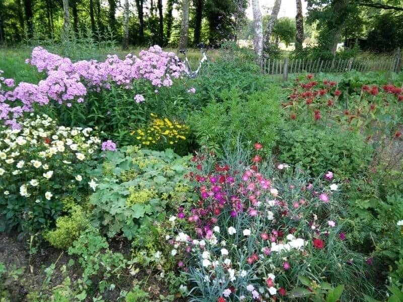 Voorjaar, tijd voor de tuin…