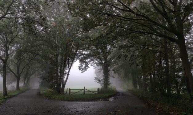 Helmerhoek in de mist